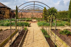 Garden-Rose-Arch-2.jpg
