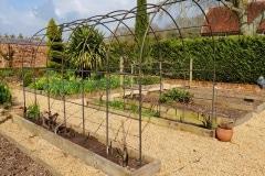 Garden-Rose-Arch.jpg